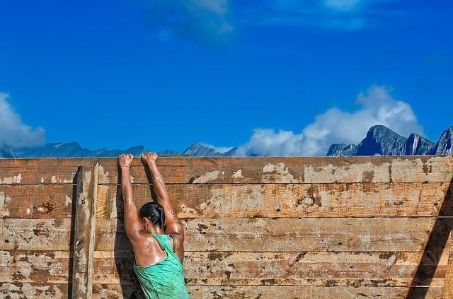wall-reach